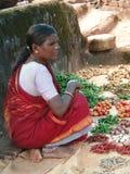 τα chilis Ινδός πωλούν τη γυναίκ&al Στοκ εικόνες με δικαίωμα ελεύθερης χρήσης