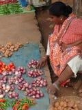 τα chilis Ινδός πωλούν τη γυναίκ&al Στοκ Εικόνες