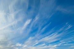 Τα cirrus σύννεφα Στοκ Φωτογραφία