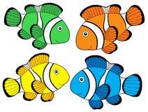 τα clownfishes 1 χρωματίζουν διάφορ&omicro Στοκ Εικόνες