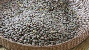 Τα culinaris φακών είναι επιστημονικό όνομα του οσπρίου φακών Ψάθινο καλάθι με τα σιτάρια Φασόλια οσπρίων για τα χορτοφάγα τρόφιμ φιλμ μικρού μήκους
