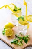 Τα glasss του mojito με το λεμόνι και το άχυρο κατανάλωσης Στοκ Φωτογραφία