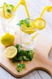 Τα glasss του mojito με το λεμόνι και το άχυρο κατανάλωσης Στοκ Φωτογραφίες