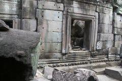 Τα Watt Angkor - τοίχοι καταστροφών ναών TA Prohm της khmer πόλης Angkor wat εγκαταστήστε στην Καμπότζη - δηλώνουν το μνημείο Στοκ φωτογραφίες με δικαίωμα ελεύθερης χρήσης