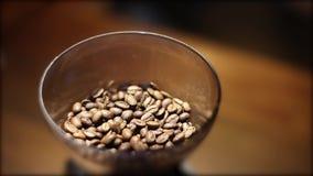Τεθειμένα φασόλια καφέ στη μηχανή μύλων καφέ απόθεμα βίντεο