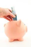 Τεθειμένα χρήματα στη piggy τράπεζα Στοκ εικόνα με δικαίωμα ελεύθερης χρήσης