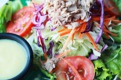 Τεθειμένος σαλάτα τόνος λαχανικών στο πιάτο. Στοκ εικόνα με δικαίωμα ελεύθερης χρήσης