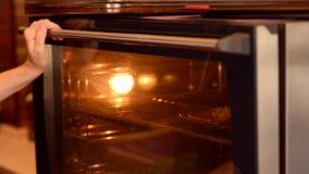 Τεθειμένος στην πίτσα φούρνων απόθεμα βίντεο