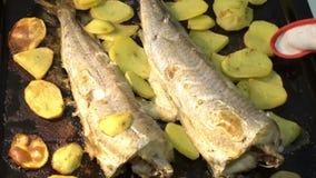 Τεθειμένος στο ψήσιμο στον πίνακα Σπιτικά φρέσκα τρόφιμα Καυτό πιάτο Τα νόστιμα και υγιή ψάρια και τα τσιπ στο φούρνο απόθεμα βίντεο