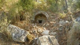 Τεκτονική των μεγάλων κομμένων πετρών που εισβάλλονται με τα δάση της αρχαίας πόλης απόθεμα βίντεο