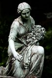τελευταία τριαντάφυλλα Στοκ εικόνες με δικαίωμα ελεύθερης χρήσης