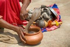 Τελευταίος γόης φιδιών (Bede) από Benares στοκ φωτογραφία με δικαίωμα ελεύθερης χρήσης