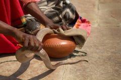 Τελευταίος γόης φιδιών (Bede) από Benares στοκ εικόνα με δικαίωμα ελεύθερης χρήσης