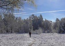 Τελευταίο χιόνι την άνοιξη στοκ εικόνα