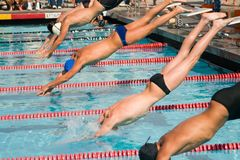 τελικά κολυμπούν Στοκ φωτογραφίες με δικαίωμα ελεύθερης χρήσης
