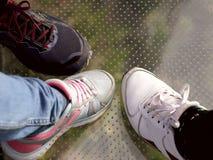 Τεμάχια τριών ποδιών στα πάνινα παπούτσια σε μια διαφανή επιφάνεια υψηλή στην πλατφόρμα εξέτασης στη Μαδέρα στοκ εικόνες με δικαίωμα ελεύθερης χρήσης