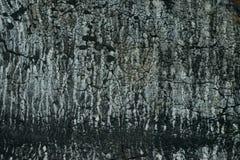 Τεμάχιο μιας παλαιάς στέγης ruberoid στοκ φωτογραφίες με δικαίωμα ελεύθερης χρήσης