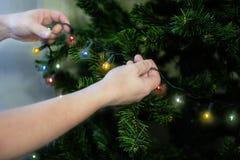 Τεμάχιο της διακόσμησης του χριστουγεννιάτικου δέντρου στοκ εικόνες