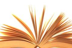 Τεμάχιο του ανοικτού βιβλίου Στοκ Εικόνες