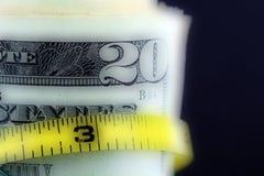 Τεμάχιο του λογαριασμού είκοσι δολαρίων Στοκ Εικόνες