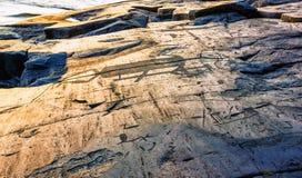 Τεμάχιο Onega Petroglyphs στο ακρωτήριο Besov αριθ. Στοκ Φωτογραφία
