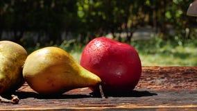 Τεμαχίζοντας κόκκινο μήλο απόθεμα βίντεο