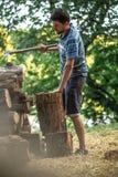 Τεμαχίζοντας ξύλο ατόμων με ένα τσεκούρι Στοκ Εικόνα