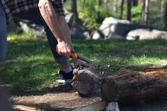 Τεμαχίζοντας ξύλο στο δάσος Στοκ Εικόνα