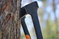 Τεμαχίζοντας ξύλο στο δάσος Στοκ φωτογραφίες με δικαίωμα ελεύθερης χρήσης