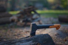 Τεμαχίζοντας ξύλο στο δάσος Στοκ Φωτογραφίες