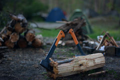 Τεμαχίζοντας ξύλο στο δάσος Στοκ Φωτογραφία