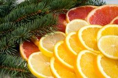 Τεμαχισμένα λεμόνια, γκρέιπφρουτ, πορτοκάλια Στοκ Φωτογραφία