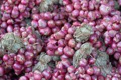 Τεμαχισμένα κρεμμύδια, μετά από να πάρει τα προϊόντα από τον κήπο κρεμμυδιών, έπειτα ξηρό για να φέρει τα τρόφιμα Είναι δημοφιλές Στοκ Εικόνες
