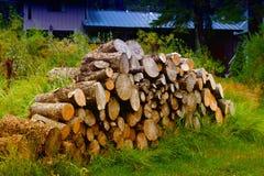 Τεμαχισμένα ξύλα Στοκ Εικόνες