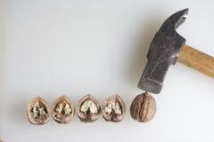 τεμαχισμένα ξύλα καρυδιά&sigma Στοκ Εικόνες