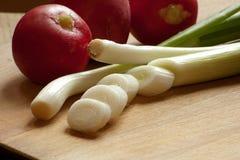 Τεμαχισμένα πράσινα κρεμμύδια και κόκκινα ραδίκια στοκ φωτογραφία
