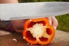Τεμαχισμένες φρέσκες ντομάτες για το μαγείρεμα στοκ εικόνες