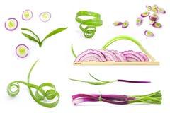 τεμαχισμένη άνοιξη φετών κρεμμυδιών συλλογής φρέσκια Στοκ φωτογραφία με δικαίωμα ελεύθερης χρήσης