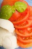 τεμαχισμένη μοτσαρέλα ντο Στοκ εικόνα με δικαίωμα ελεύθερης χρήσης