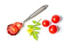 Τεμαχισμένη ντομάτα κερασιών σε ένα κουτάλι με το φυσικό κλάδο Στοκ Εικόνα