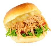 Τεμαχισμένος ρόλος χοιρινού κρέατος και σάντουιτς της Apple Στοκ Εικόνα