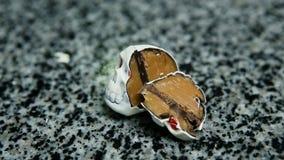 Τεμαχισμένος στη μισή καραμέλα σοκολάτας στη μορφή κρανίων σκελετών φιλμ μικρού μήκους