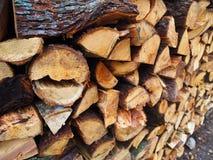 τεμαχισμένο δάσος Στοκ Εικόνες