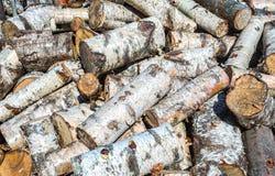 Τεμαχισμένο και συσσωρευμένο επάνω ξηρό καυσόξυλο Στοκ φωτογραφία με δικαίωμα ελεύθερης χρήσης