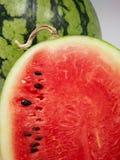Τεμαχισμένο καρπούζι που παρουσιάζει σπόρους Στοκ Εικόνα