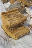 τεμαχισμένο ξηρό καυσόξυλ στοκ εικόνα