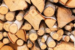 Τεμαχισμένο ξύλο της σημύδας Ξύλινη προετοιμασία για τη θέρμανση Οικολογική θέρμανση του σπιτιού Στοκ φωτογραφίες με δικαίωμα ελεύθερης χρήσης