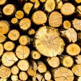 Τεμαχισμένο πεύκο καυσόξυλο που συσσωρεύεται σε woodpile ανασκόπηση κατασκευασμένη στοκ εικόνες
