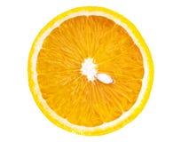 Τεμαχισμένο πορτοκάλι που απομονώνεται στοκ φωτογραφίες με δικαίωμα ελεύθερης χρήσης