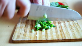 Τεμαχισμός ενός πράσινου κρεμμυδιού με το μαχαίρι αρχιμαγείρων της Ιαπωνίας για προετοιμασία εγχώριων τη δευτερεύουσα πιάτων απόθεμα βίντεο